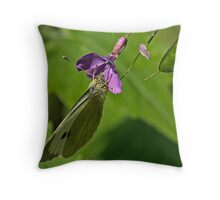 Cabbage White Butterfly 2 Throw Pillow