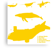 Whale Comparison Chart, NC Canvas Print