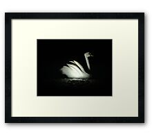 stone swan Framed Print