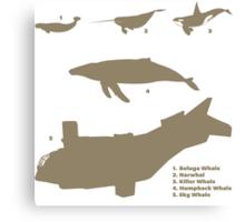 Whale Comparison Chart, NS Canvas Print