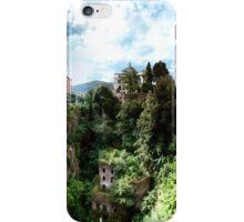 Sorrento Abandoned Mill iPhone Case/Skin