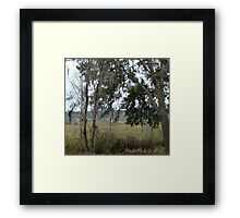 Morning - time to fish Framed Print