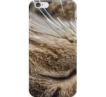 Dreaming of Mice (Amazing Challenge Entertainment) iPhone Case/Skin