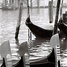 Venice  by DavidROMAN