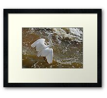 Frolic in the Froth Framed Print