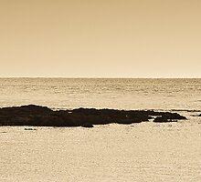 Makara Beach by Lisa Wilson