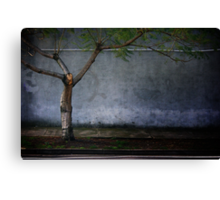 Where the wild things grew Canvas Print