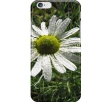 Daisy in Rain iPhone Case/Skin