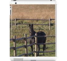 Cloudy at the Fence iPad Case/Skin