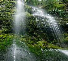 Mossy Marriotts Falls by Robert Mullner