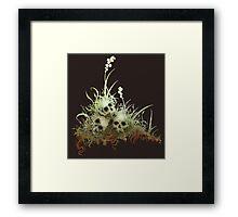 Life-Death-Life Framed Print