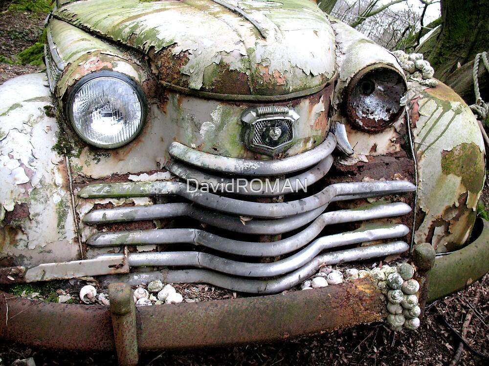 Whitey Rust by DavidROMAN
