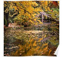 Autumnal Scene Poster