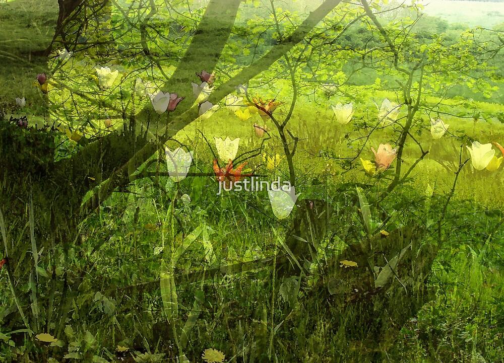 Green Delight by justlinda