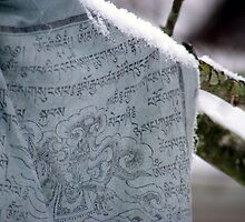 Tibetan Prayer Flag by elasita