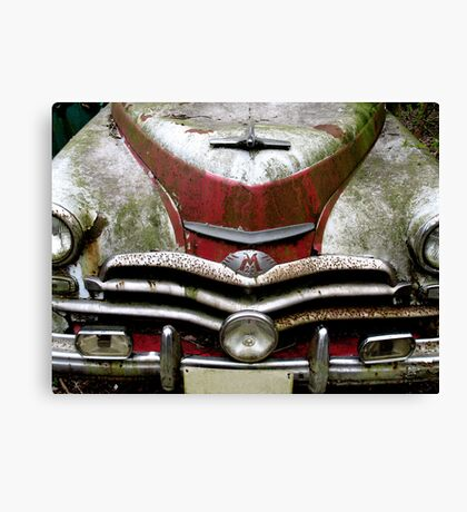 Red And White Blues Canvas Print