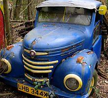 Blue Rust by DavidROMAN