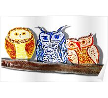 Owl Trio on Branch Poster