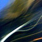Blur by elasita
