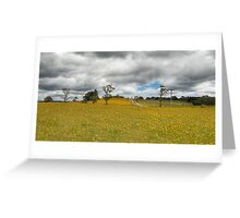 Daisy Field - Derby, Tasmania Greeting Card