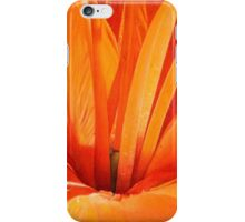 Fire_Lily iPhone Case/Skin