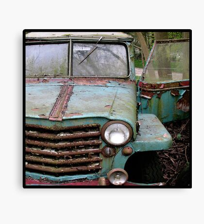 Range Rust Canvas Print