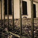 dead leaves. by adornoir