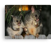 A Mother's Love! Canvas Print