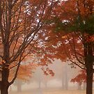 Autumn Fog 2 by elasita