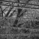 Icy Lines B&W by elasita