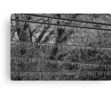 Icy Lines B&W Canvas Print
