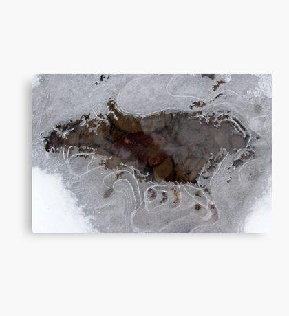 Freezing Stream Canvas Print