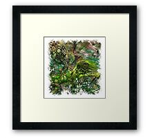 The Atlas Of Dreams - Color Plate 127 Framed Print
