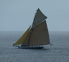 Sailing on Smooth Seas by Trish Meyer