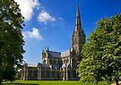 Salisbury Cathedral by Krys Bailey