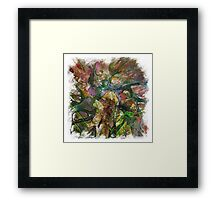The Atlas Of Dreams - Color Plate 129 Framed Print