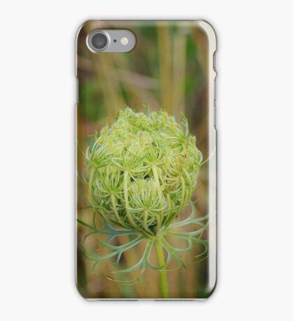 Queen Anne's Lace iPhone Case/Skin