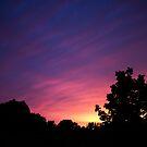 Paint the Sky by Sharlene Rens