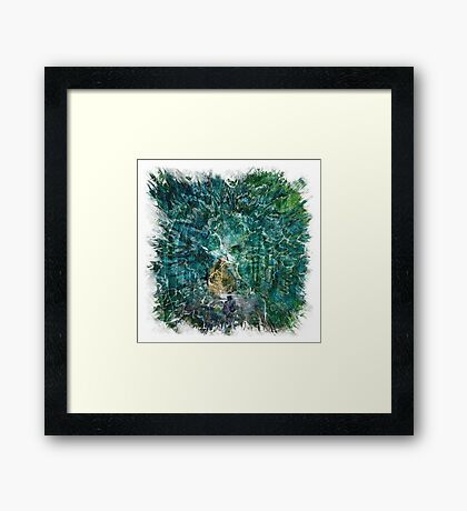 The Atlas Of Dreams - Color Plate 121 Framed Print