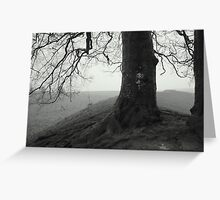 Avebury beeches Greeting Card