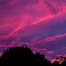 Neon Sky by Sharlene Rens
