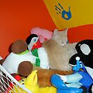 Kitty! - A fine place to nap. by Barberelli