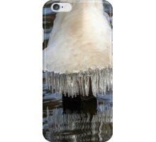 Icicles on Mona Lake iPhone Case/Skin