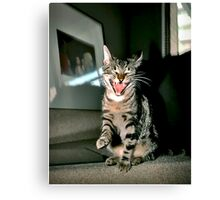 Oh That's A Good One!  Canvas Print
