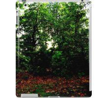 The Woods Have Eyes iPad Case/Skin
