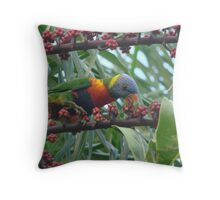 Rainbow Lorrikeet Feasting on the Umbrella  Trees Deliscious Red Fruit Throw Pillow