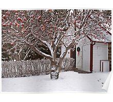 Rustic Church at Christmas Poster
