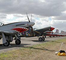 Angry Line, Avalon Airshow, Victoria, Australia 2007 by muz2142