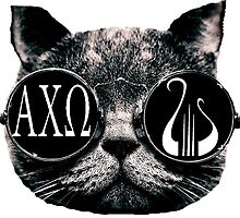 Alpha Chi Omega Cat by clast