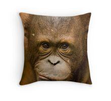 Young Orangutan  Throw Pillow